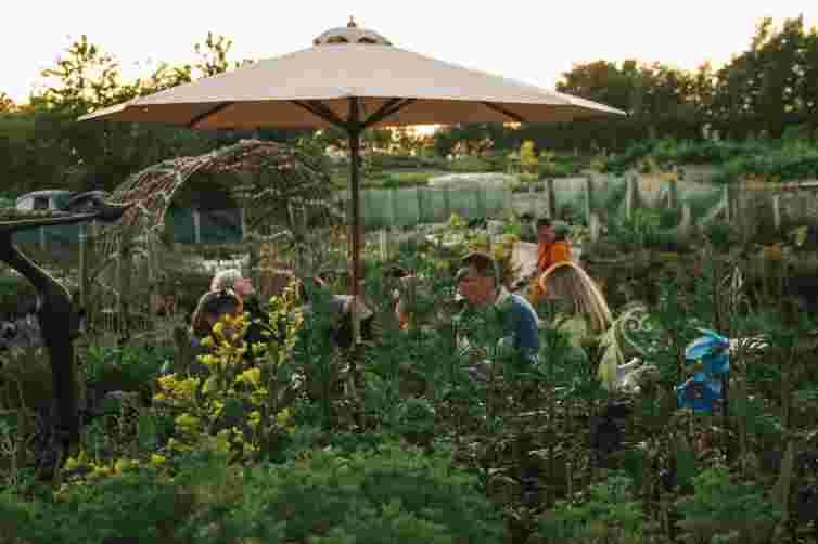 Secret Herb garden, fire pit, lunch, tea and cake near Edinburgh, Scotland