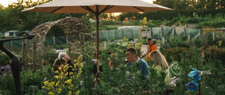 Secret Herb garden, lunch, tea and cake near Edinburgh, Scotland