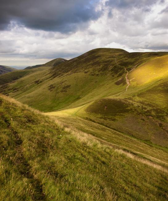Green heather hills with footpath, Pentland Hills Regional Park, sheep farm, hill farm Scotland, hiking and walking near Edinburgh